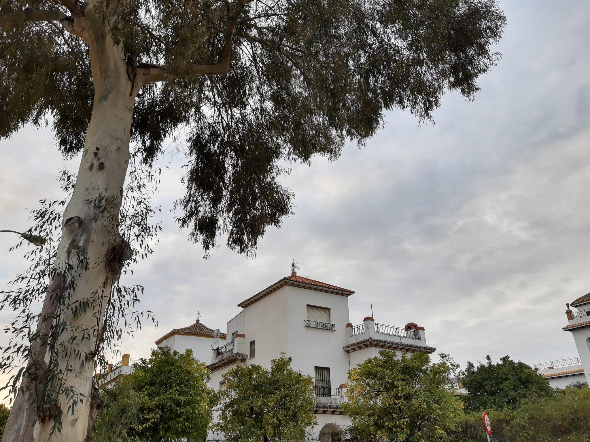 Vivienda en Calle Ifni de Sevilla